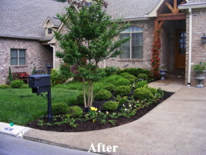 Knoxville Landscaping Services